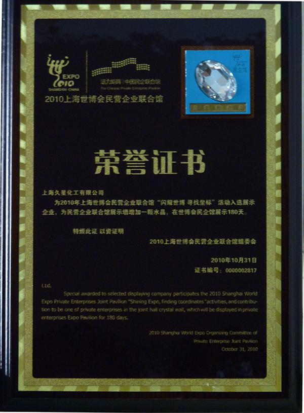 2010年閃耀世博-獎牌