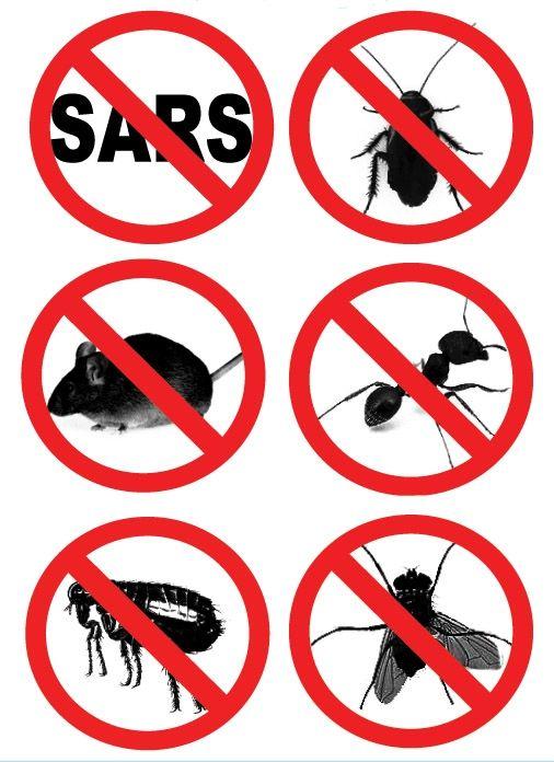 在家使用杀虫剂安全吗
