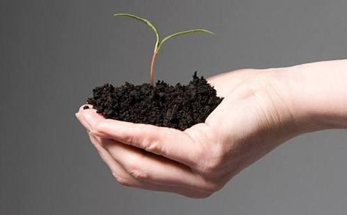 土壤检测分析