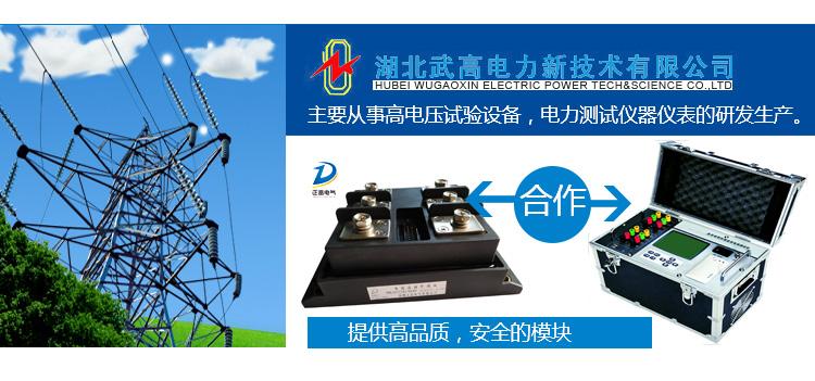 湖北武高电力新技术有限公司
