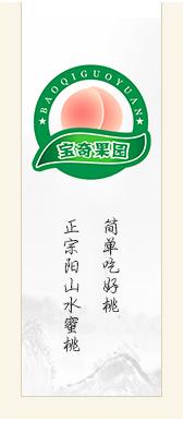 正宗阳山水蜜桃-阳山水蜜桃宝奇果园