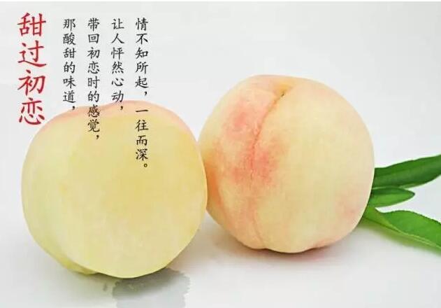 水蜜桃的外形特征竟然...