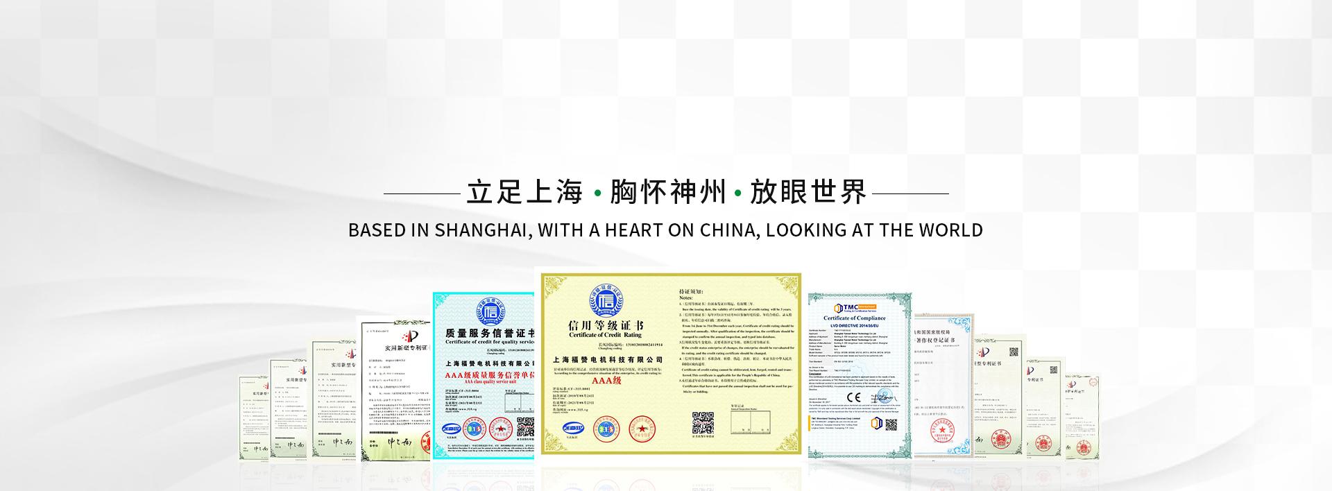 上海福赞电机科技有限公司