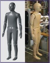 儿童热能人体模型