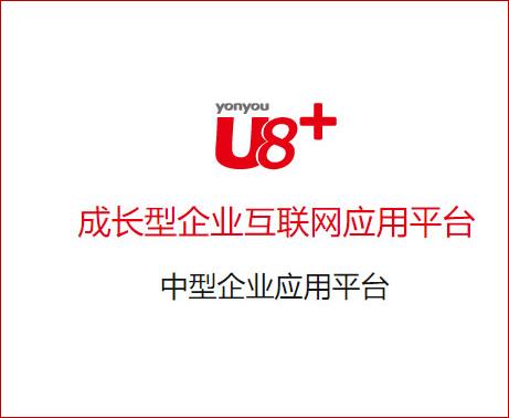 用友U8+成長型企業互聯網應用平臺架構