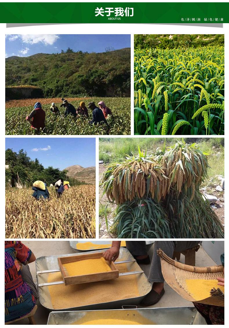 鲁乡裕绿豆--鲁乡裕家庭农场