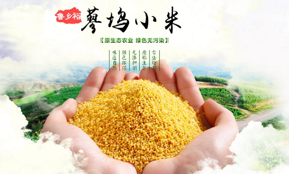 小米还是富硒的好,富硒小米养胃又养生