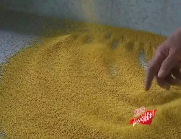 五谷杂粮 小米为首
