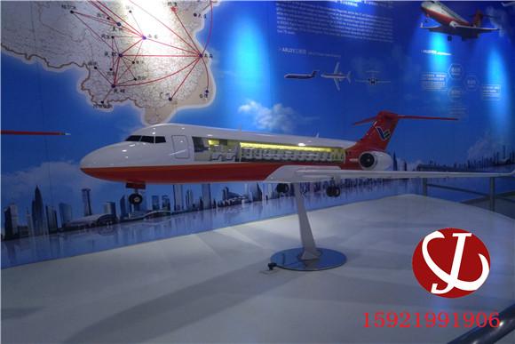 飞机模型 (1)