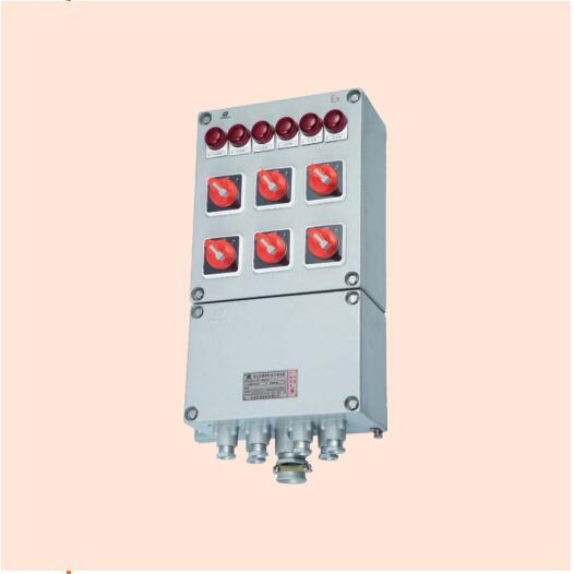 BXM(D-DIP粉尘防爆照明(动力)配电箱