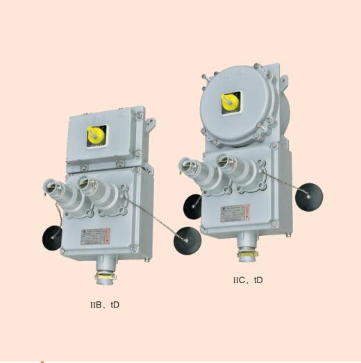 BXX52防爆动力检修电源插座
