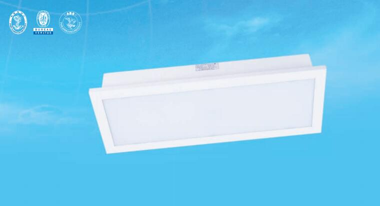 CPY22-2荧光蓬顶灯