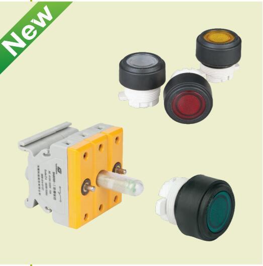 BC8060防爆带灯按钮装置