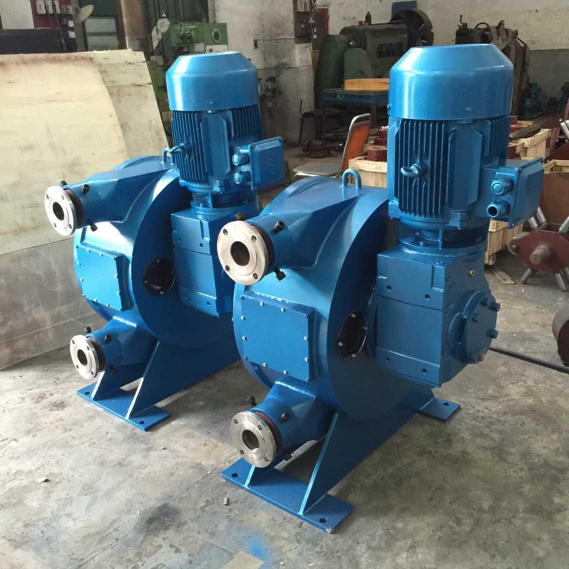 立式软管泵