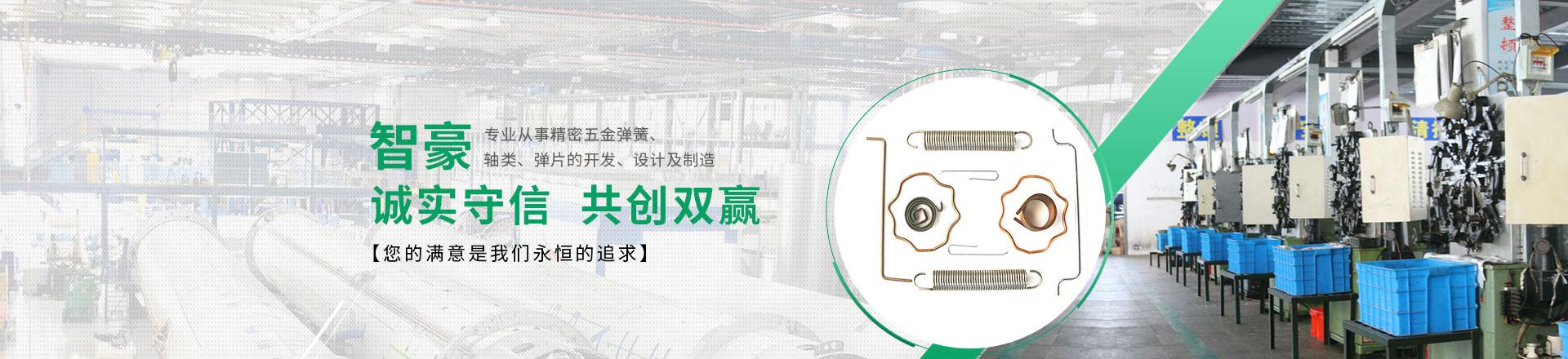 上海精密弹簧加工