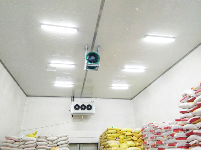 小麦种子生产恒温仓储
