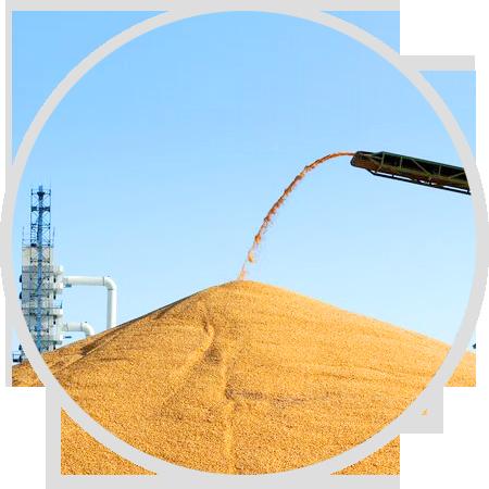 订单式生产流程管理,<p>确保小麦品质农民收益</p>