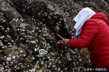 牡蛎和粘合剂