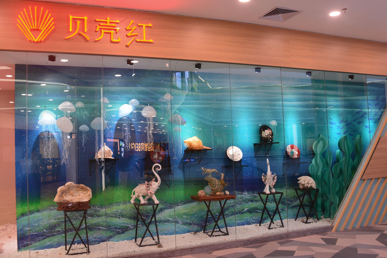 广东首家贝壳文化艺术馆