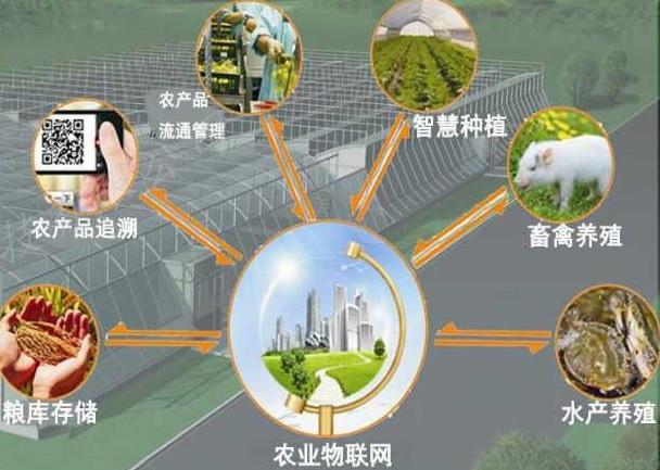 环境监控用红外CO2传感器