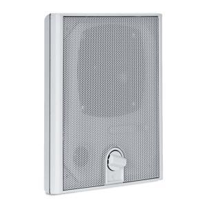 DU 31AT 带电源选择器的嵌入式壁挂音箱