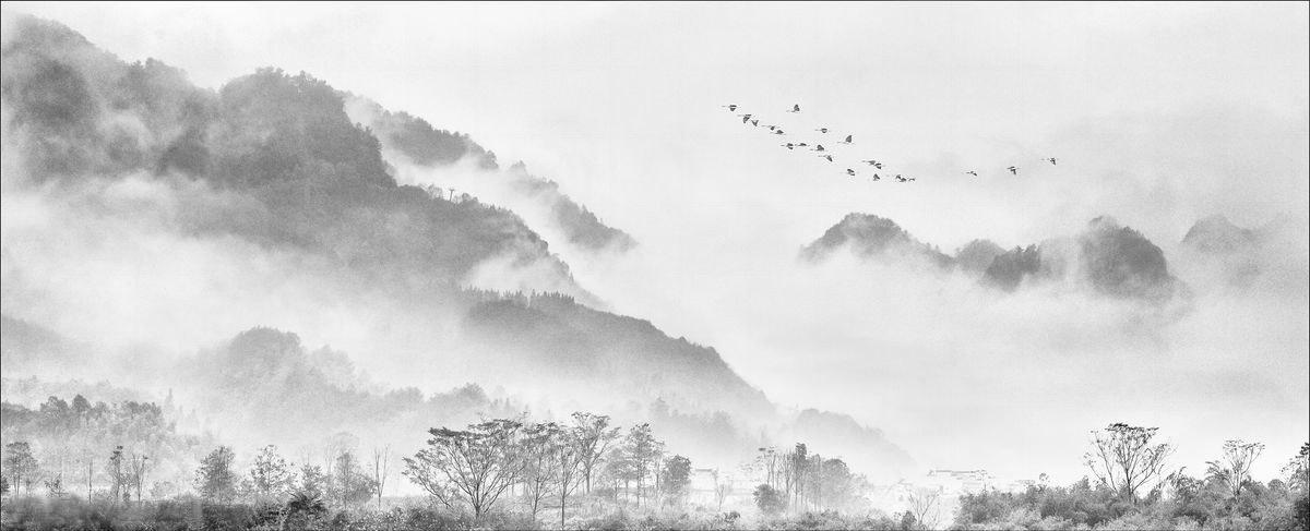 关于中国画的空灵之感