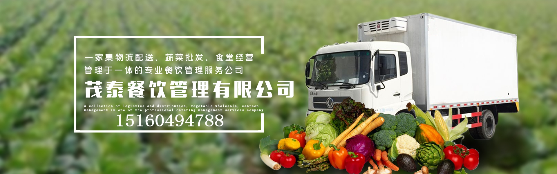 莆田蔬菜配送