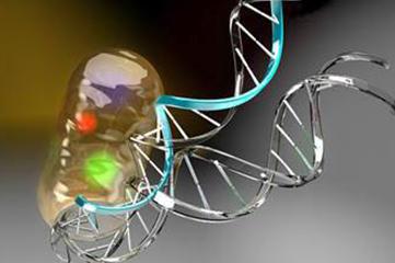 同济大学发布单细胞测序新技术,可同时分析转录组和甲基化组