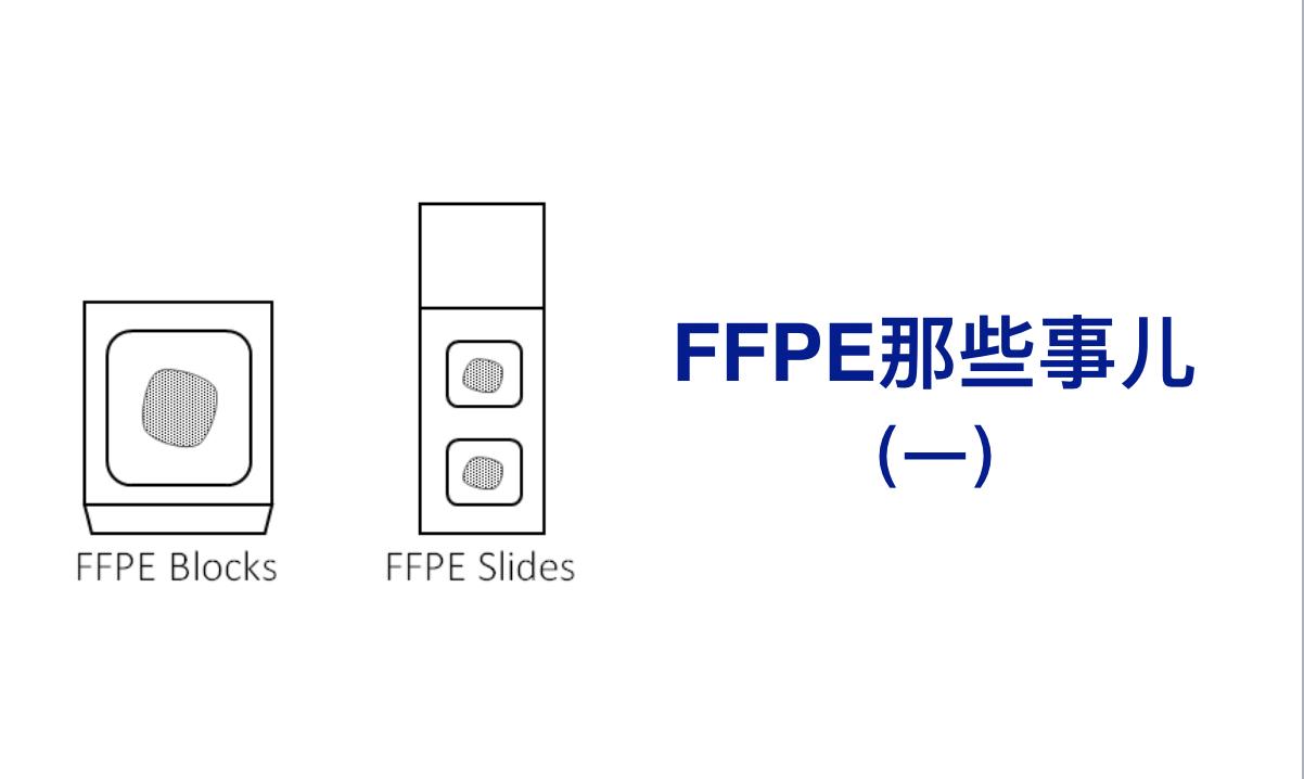 FFPE那些事儿(一)