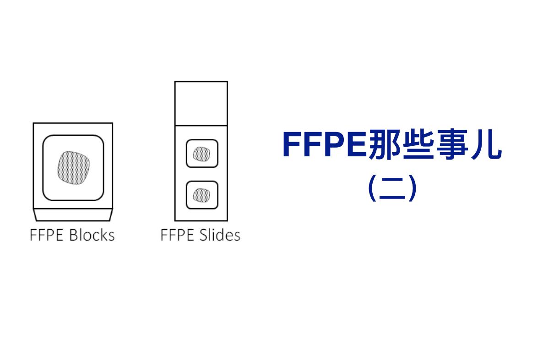 FFPE那些事儿(二)
