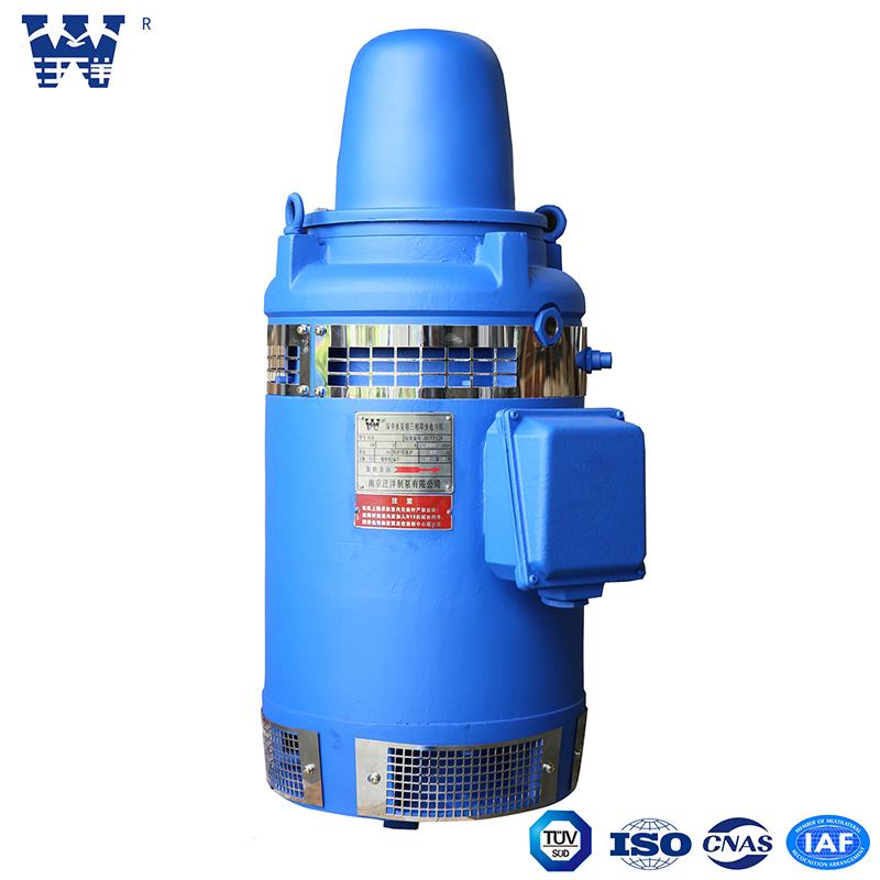 长轴深井泵专用电机