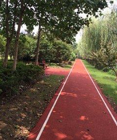 嘉定南翔公园彩色沥青