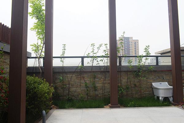 紫园空中花园
