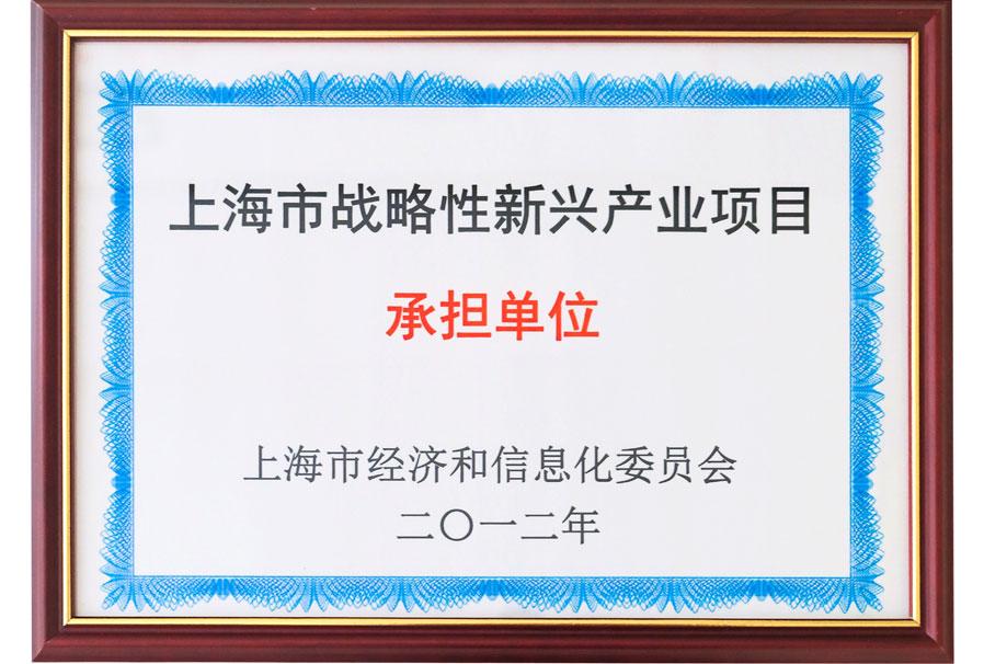 上海市戰略性新興產業項目