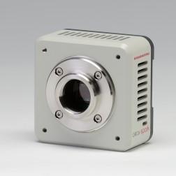 新款CMOS相机-高性价比相机