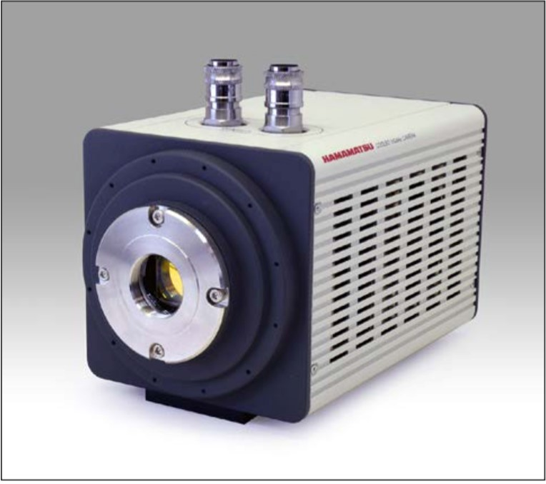 InGaAs相机-近红外荧光成像