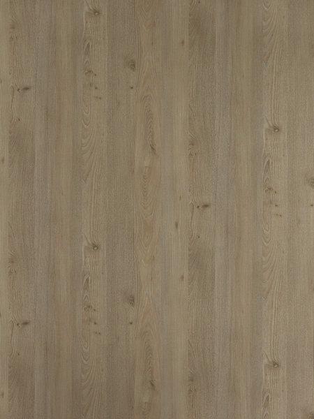 沙点梣木裸木纹-6439D8