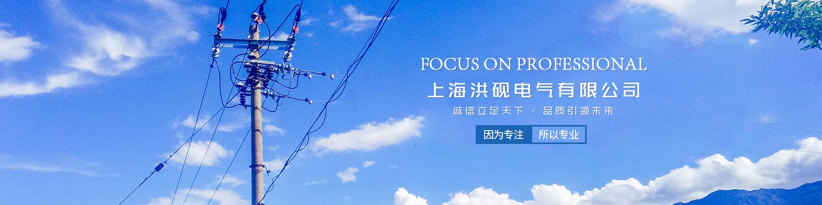 上海洪硯電氣有限公司