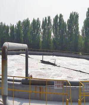 造纸污水净化处理