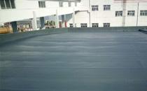 金正大国际车间屋面聚脲防水施工